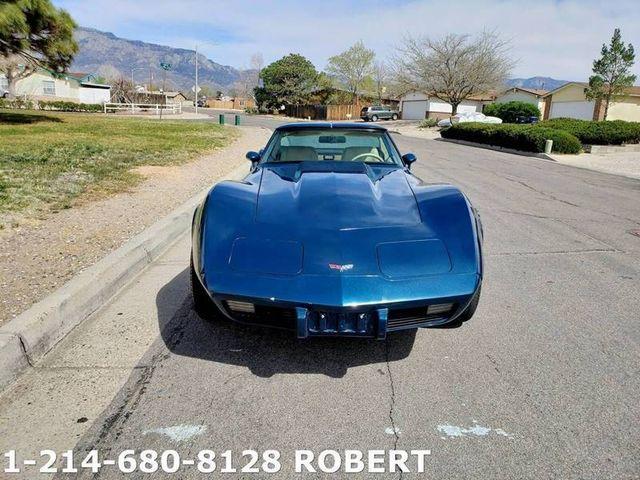1979 Chevrolet Corvette 11