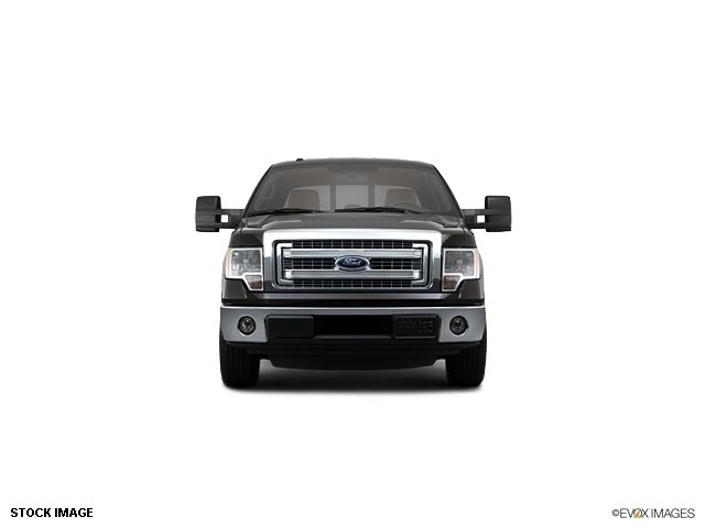 2013 Ford F-150  - 10855944 - 1
