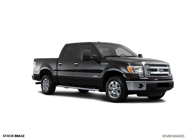 2013 Ford F-150  - 10855944 - 2