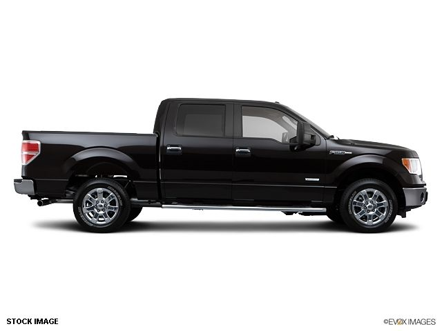 2013 Ford F-150  - 10855944 - 3