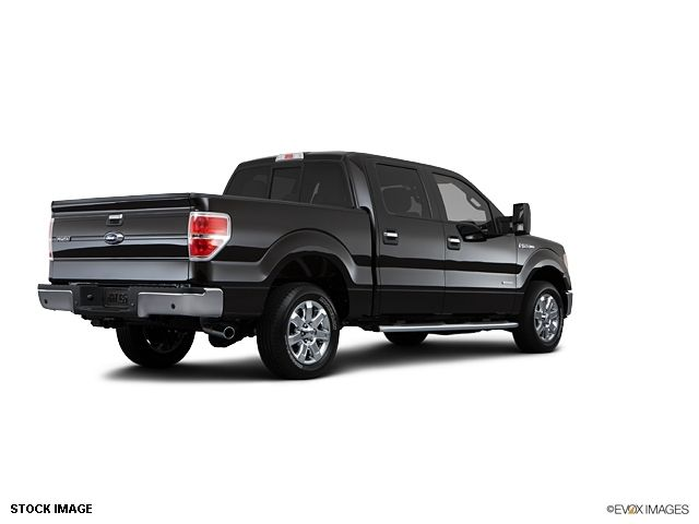 2013 Ford F-150  - 10855944 - 4