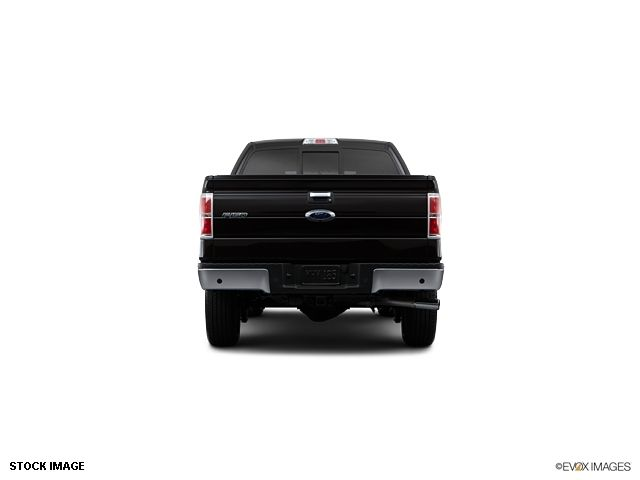 2013 Ford F-150  - 10855944 - 5