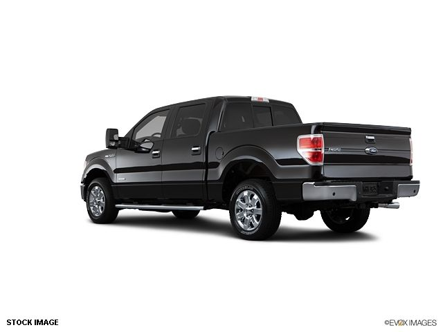 2013 Ford F-150  - 10855944 - 6