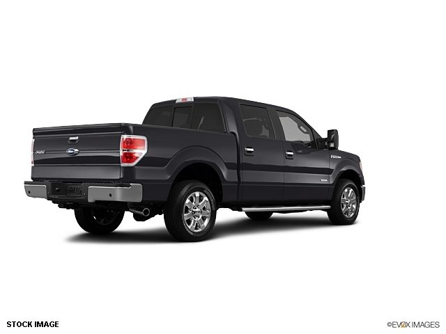 2013 Ford F-150  - 10856134 - 1