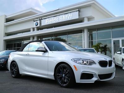2017 BMW 2 Series - WBA2L1C39HV666443