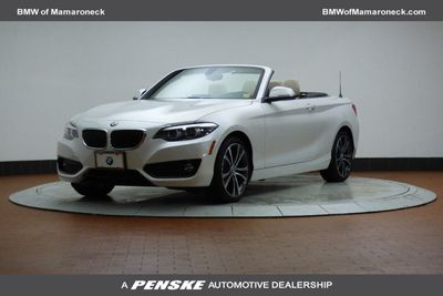 2018 BMW 2 Series - WBA2K1C50JVB64515