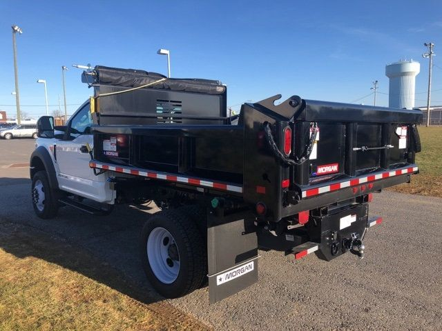 2019 Ford Super Duty F-450 DRW Cab-Chassis 9' Morgan Steel Dump Body - 18505992 - 19