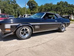 1971 Ford Mustang - 7296356843