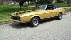 1973 Ford Mustang - 3410413732