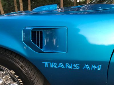 1976 Pontiac Trans Am Trans Am 455 HO - Click to see full-size photo viewer