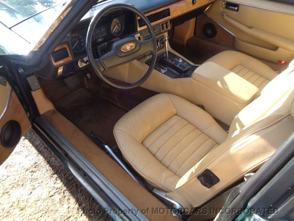 1985 Jaguar XJS COUPE THESE CLASSIC BEAUTIES ARE GETTING HARD TO FIND!  - 17482476 - 10