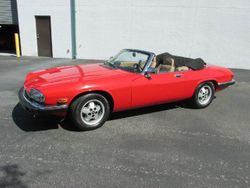 1991 Jaguar XJS - SAJTW4844MC176422