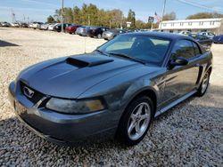 2003 Ford Mustang - 1FAFP42X03F380181