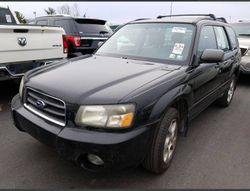 2003 Subaru Forester - JF1SG65633H720151