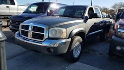 2005 Dodge Dakota - 1D7HW48N85S253819