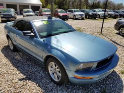 2006 Ford Mustang - 1ZVFT84N165139634