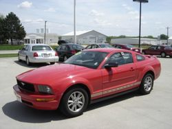 2006 Ford Mustang - 1ZVFT80N265165889