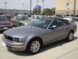 2006 Ford Mustang - 1ZVFT84NX65244415
