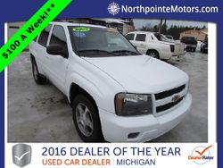 2009 Chevrolet Trailblazer - 1GNDS33S892102374