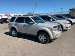 2009 Ford Escape - 1FMCU03709KD05344