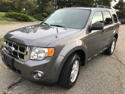 2010 Ford Escape - 1FMCU9D77AKC17236