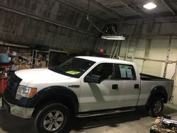 2010 Ford F-150 - 1FTEW1CW5AFB05089