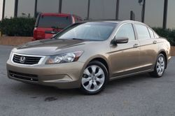 2010 Honda Accord Sedan - 1HGCP2F82AA149430