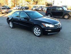 2011 Honda Accord Sedan - 1HGCP2F84BA057348
