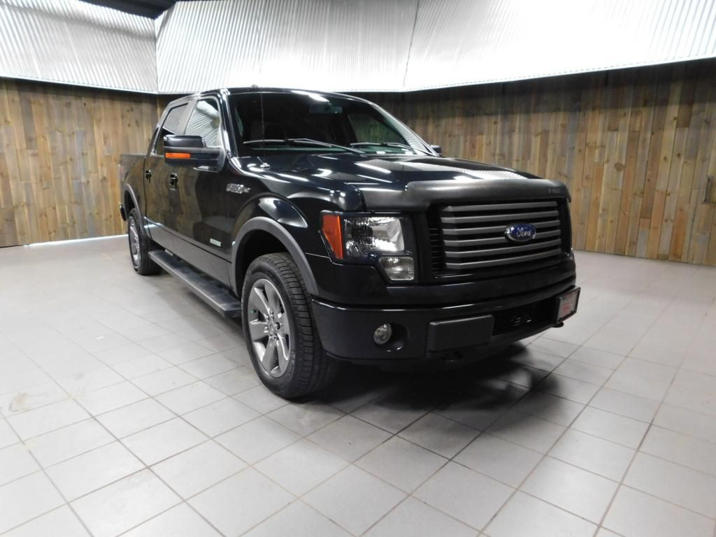 2012 Ford F-150 FX4 - 18189964 - 1