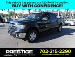 2013 Ford F-150 - 1FTFW1EF2DFB09817