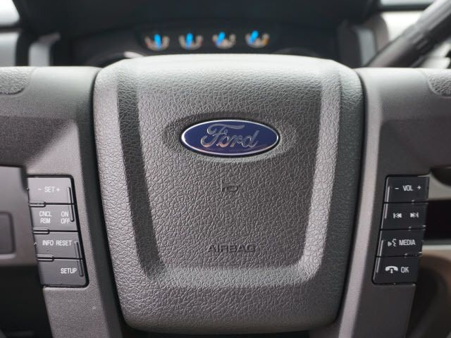 2014 Ford F-150  - 14138525 - 18