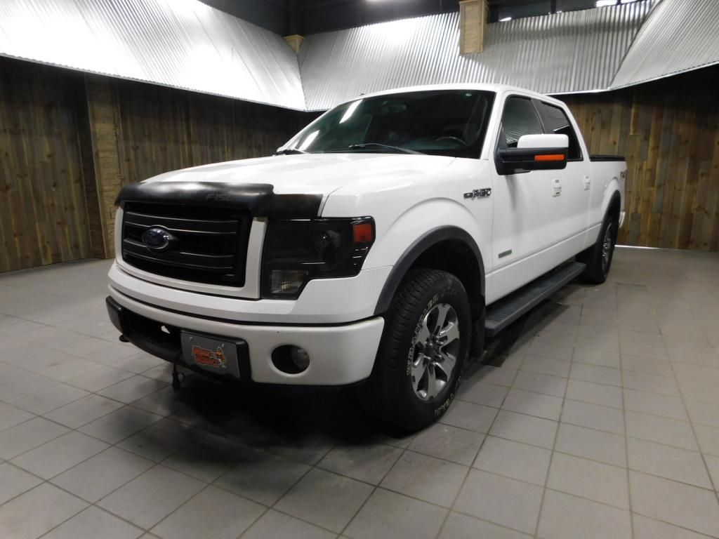 2014 Ford F-150 FX4 - 18087488 - 3