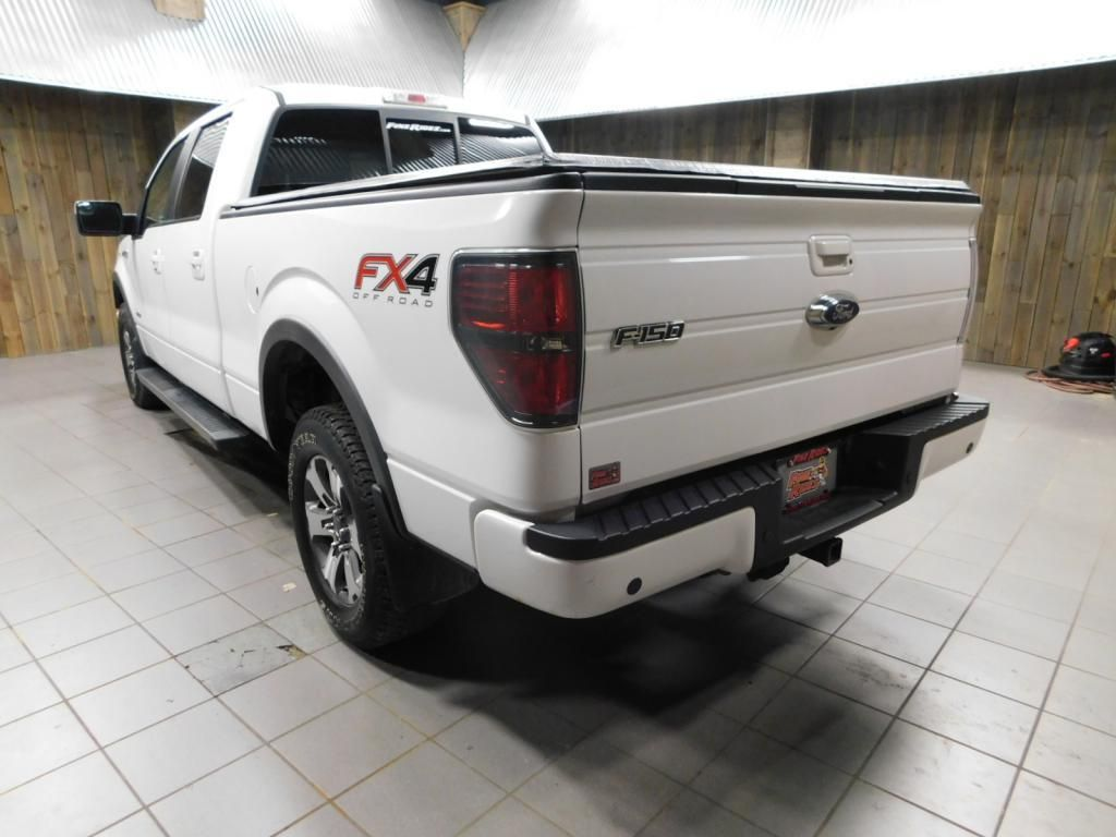 2014 Ford F-150 FX4 - 18087488 - 6