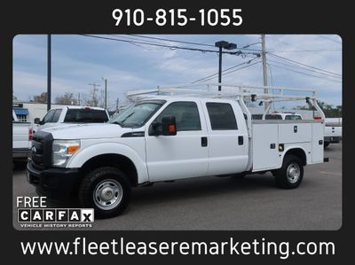 2015 Ford Super Duty F-250 4WD Utility Body with Ladder Rack