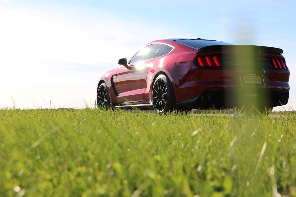 2017 Ford Mustang Shelby GT350 Fastback - 17036191 - 12